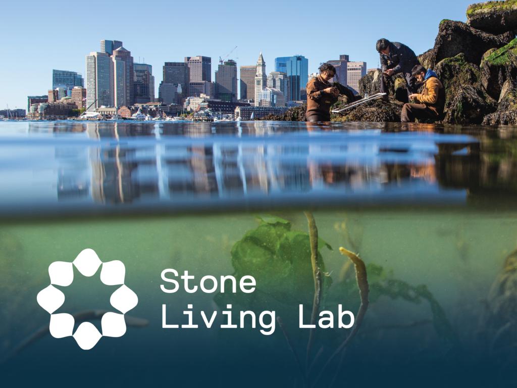 Stone Living Lab social media graphic